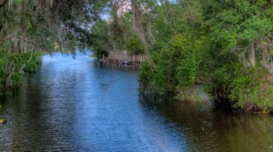 Live Oak Estates Orlando by ICI Homes